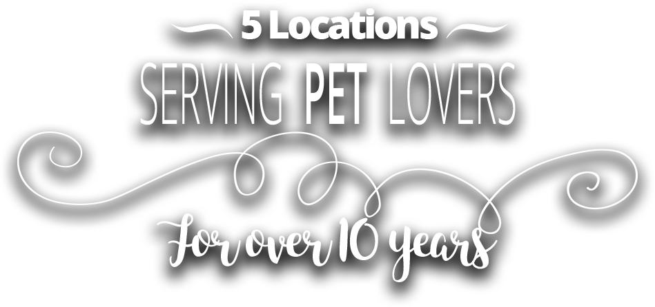 Furry Babies - Serving pet lovers for over 10 years