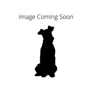 Dnadie Dinmont Terrier